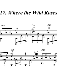 Sheet music, tabs for guitar. Where the Wild Roses Grow.