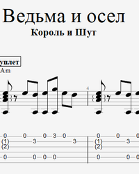Sheet music, tabs for guitar. Witch and Donkey.