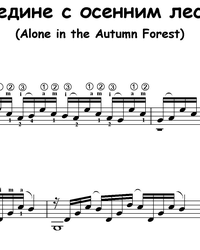 Sheet music, tabs for guitar. Alone With the Autumn Forest.