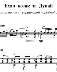 Sheet music, tabs for guitar. Cossack Went to the Danube.