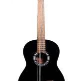 Takamine g-series classical gc1